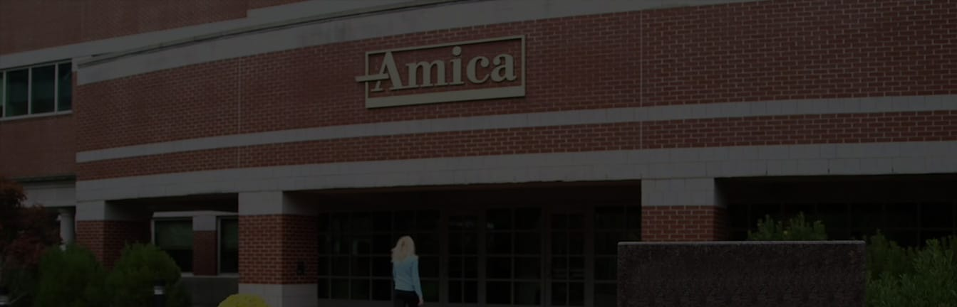 Amica Car Insurance Review - Rates for Insurance